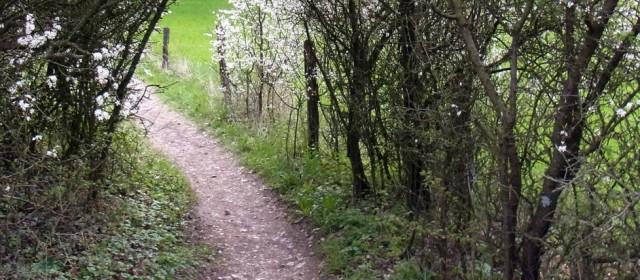 Rad- Rundtour zum Heimathaus in Hövelhof