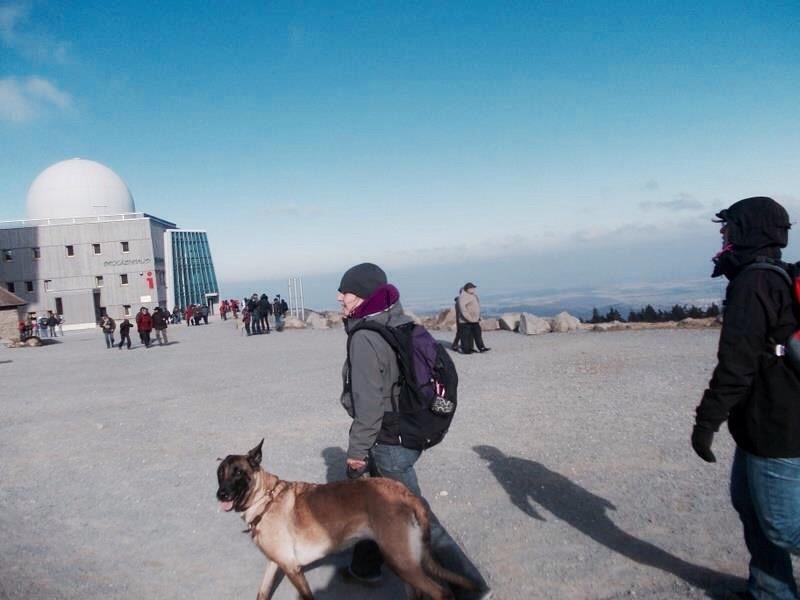 Edda und Ex-Polizeihund Nora auf dem Brocken